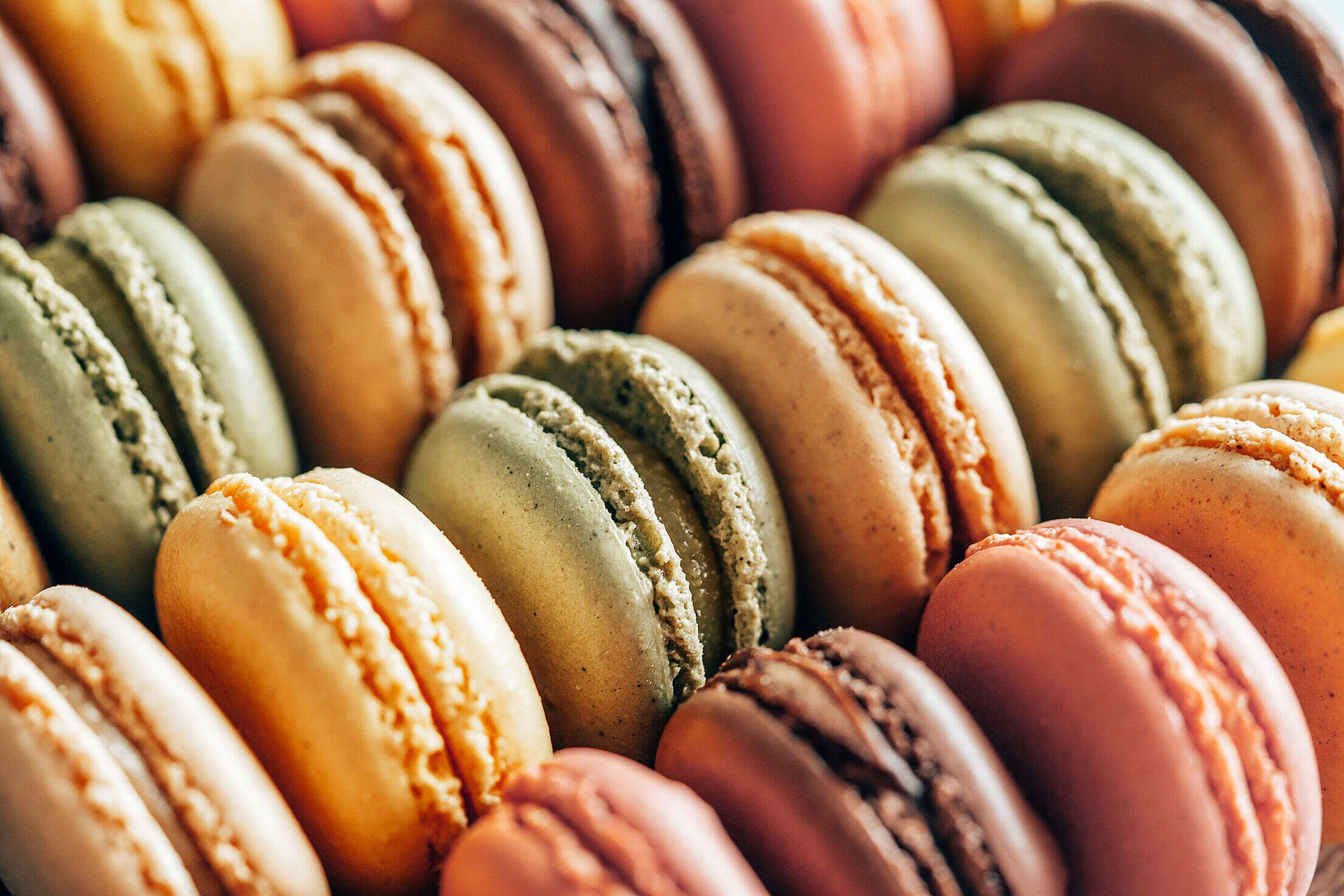 A Lot of Macarons in A Row Free Stock Photo