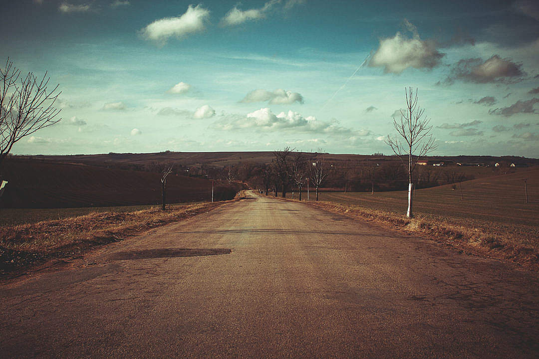 Download A Road After Winter FREE Stock Photo