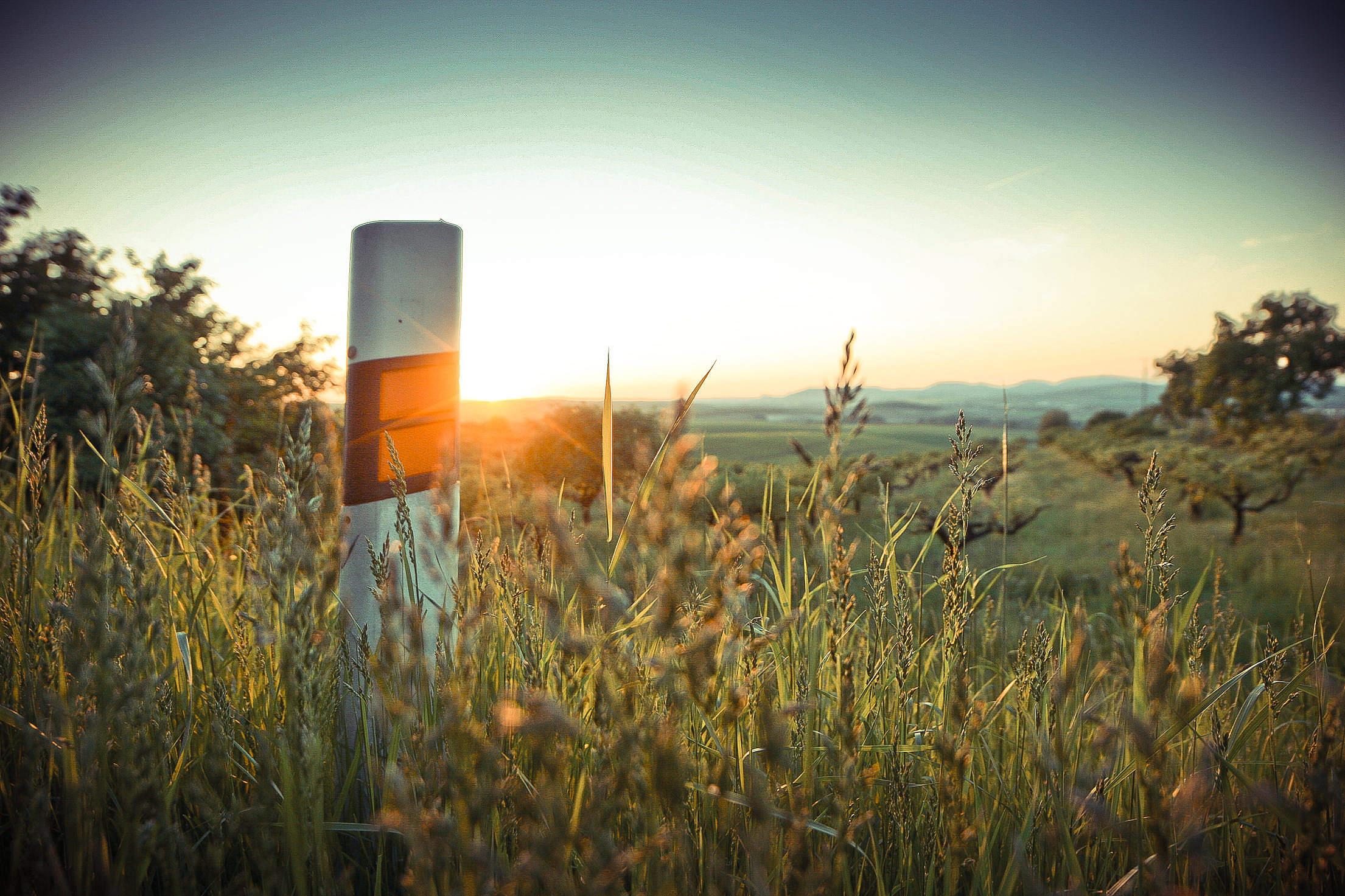 A Road Bollard Free Stock Photo