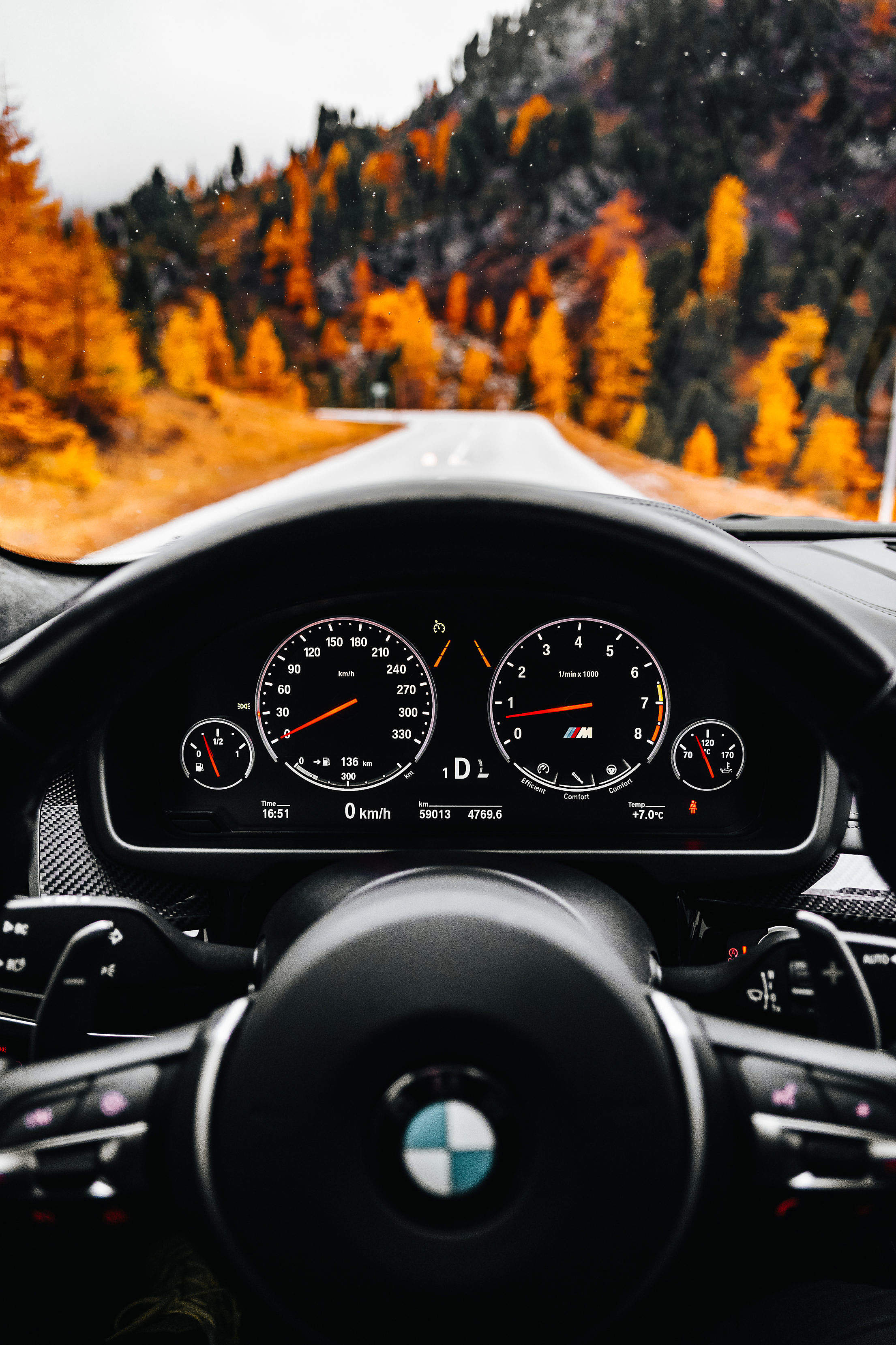 A View from The Driver's Angle to an Autumn Road Free Stock Photo