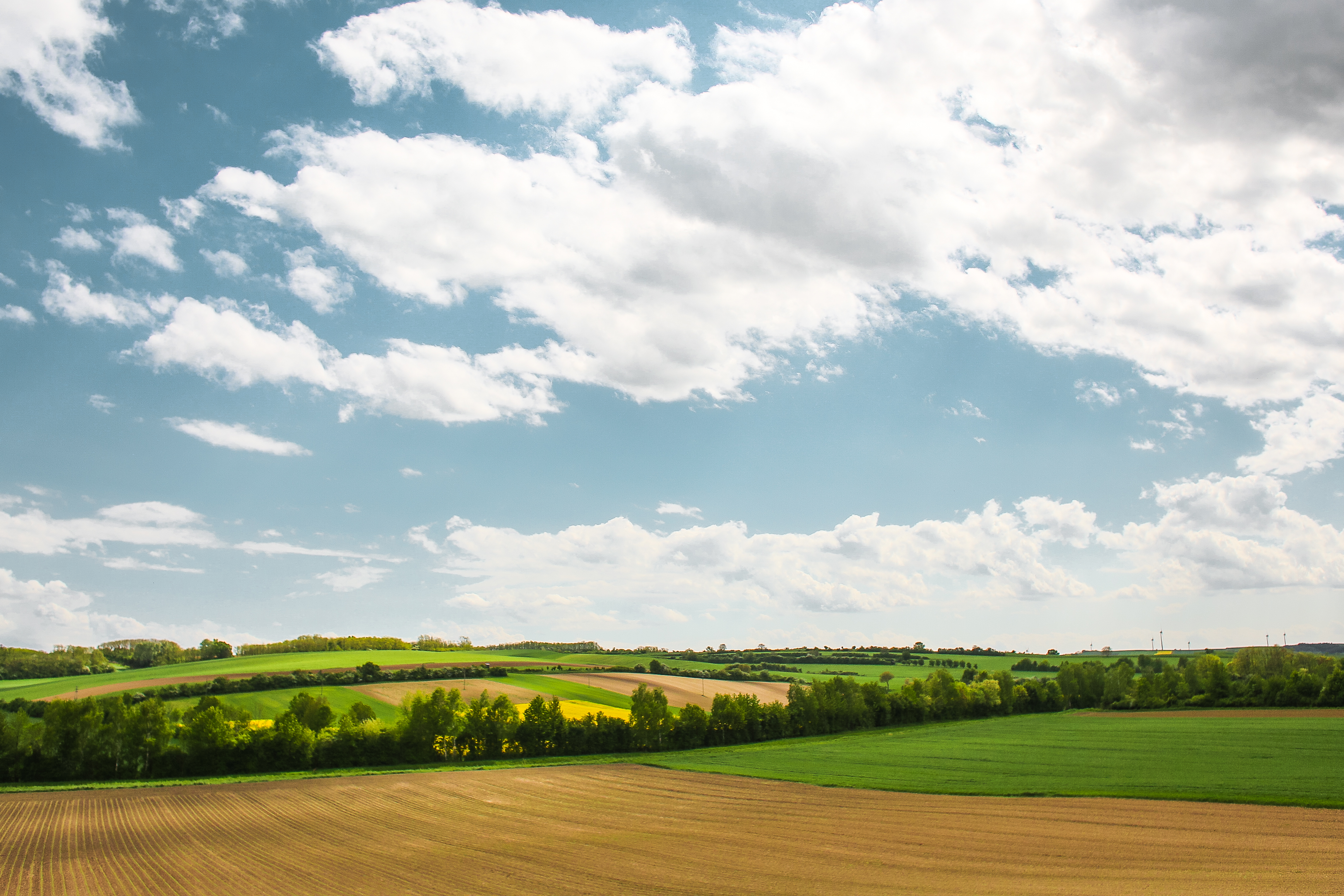 Download Another Scenery with Fields FREE Stock Photo