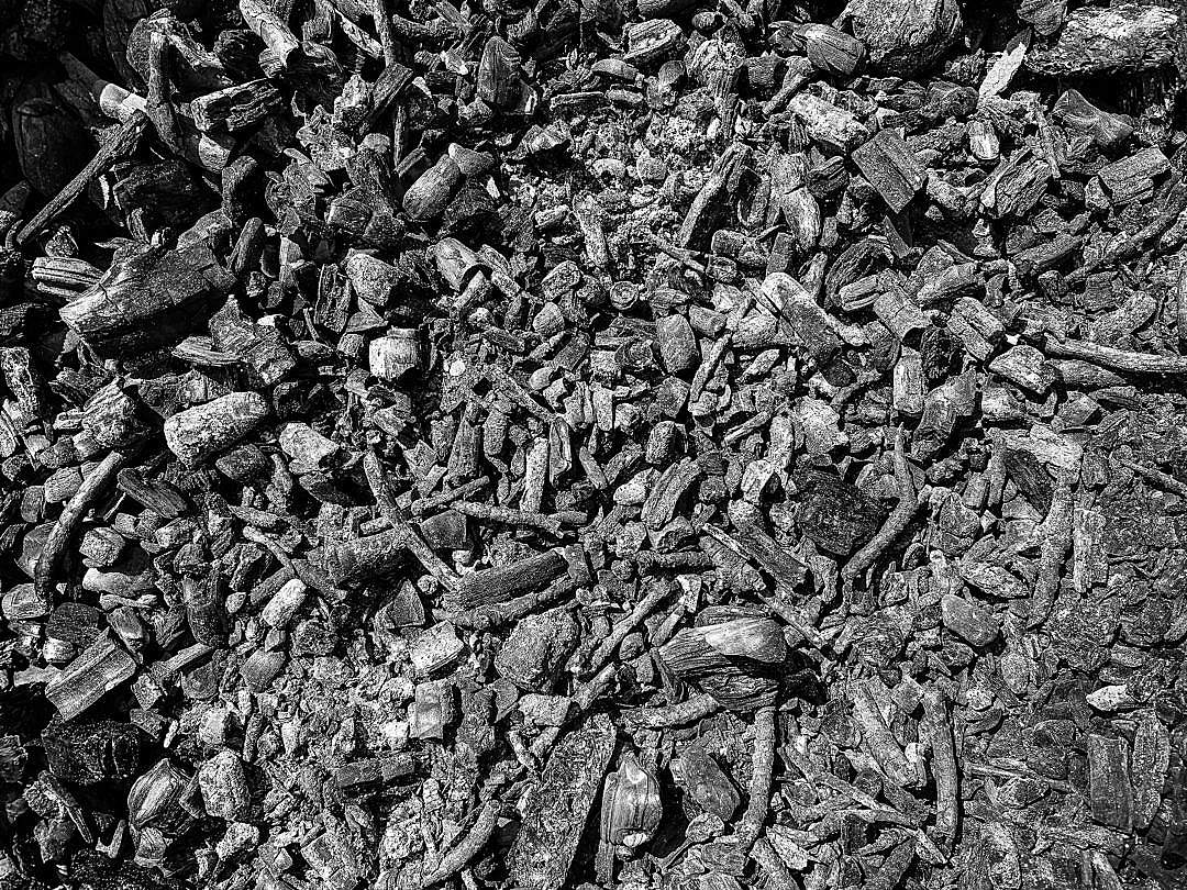Download Ash of Burned Wooden Barks FREE Stock Photo