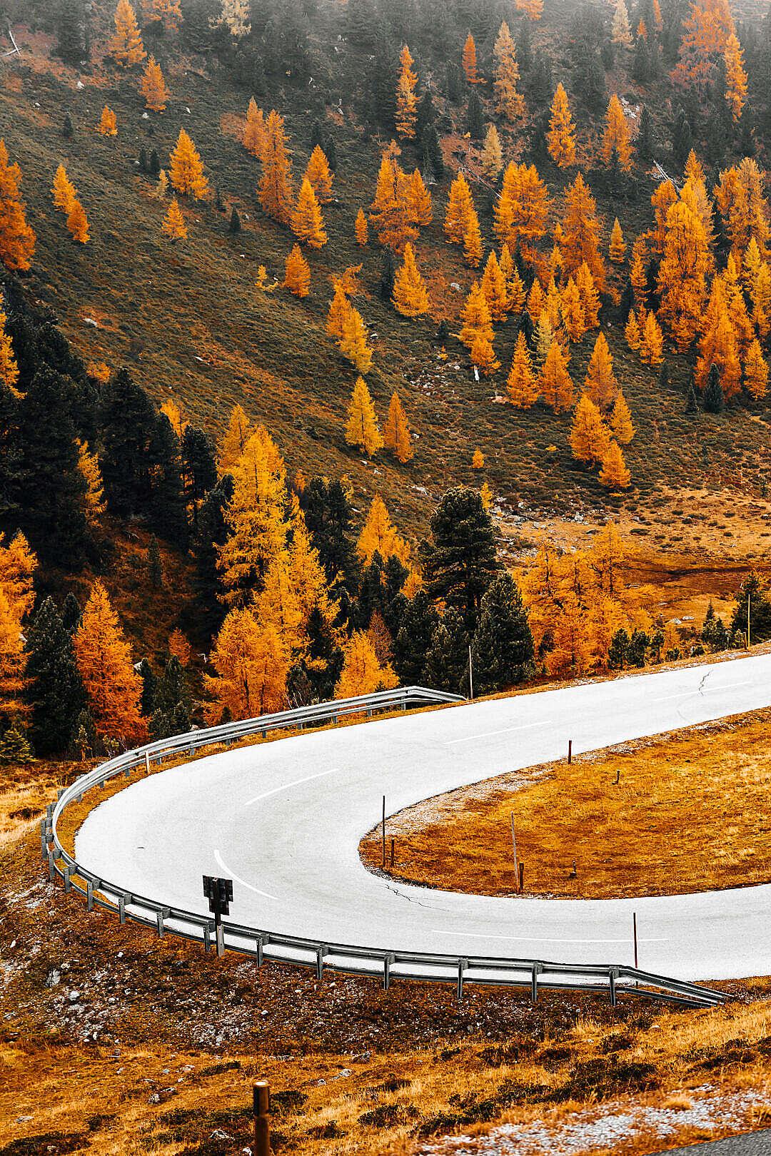 Download Austrian Nockalm Road in Fall FREE Stock Photo