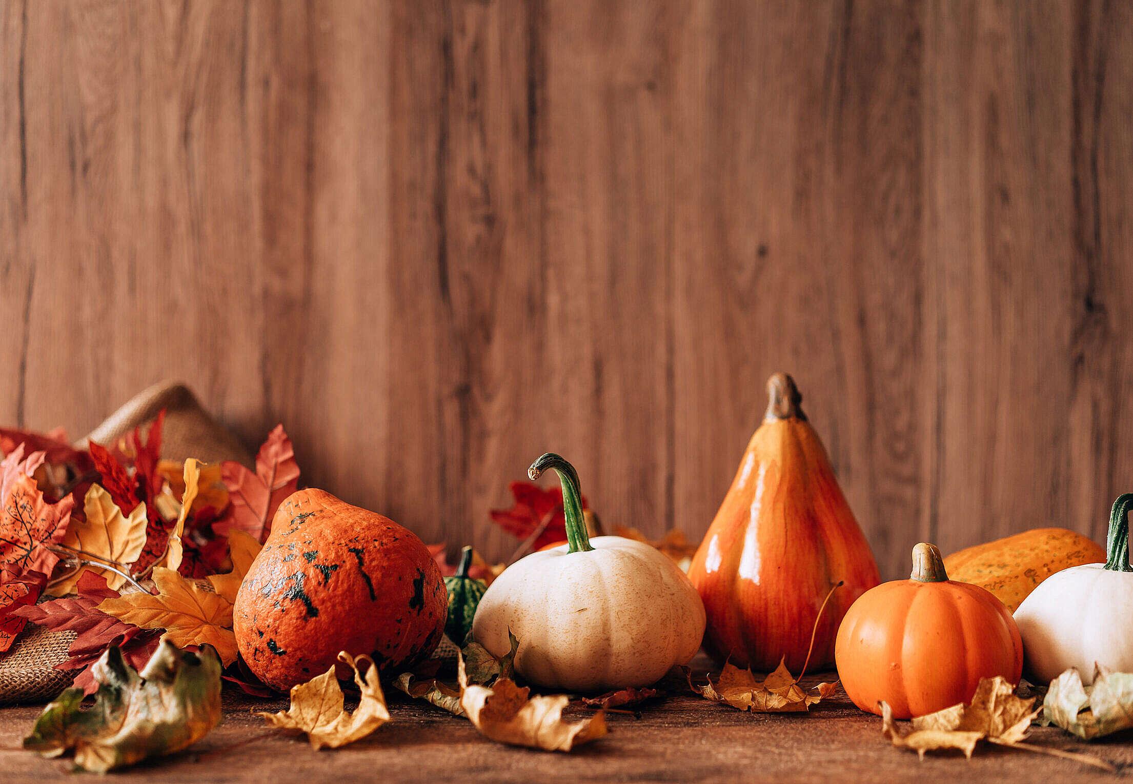Autumn Fall Pumpkins Decorative Background Free Stock Photo
