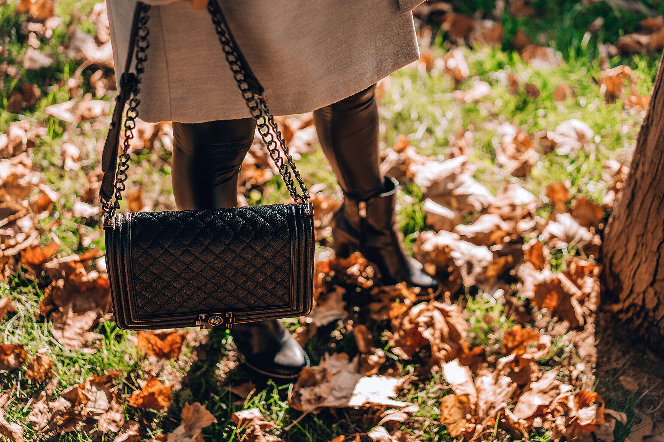 Autumn Fashion Woman with Leather Bag Free Stock Photo