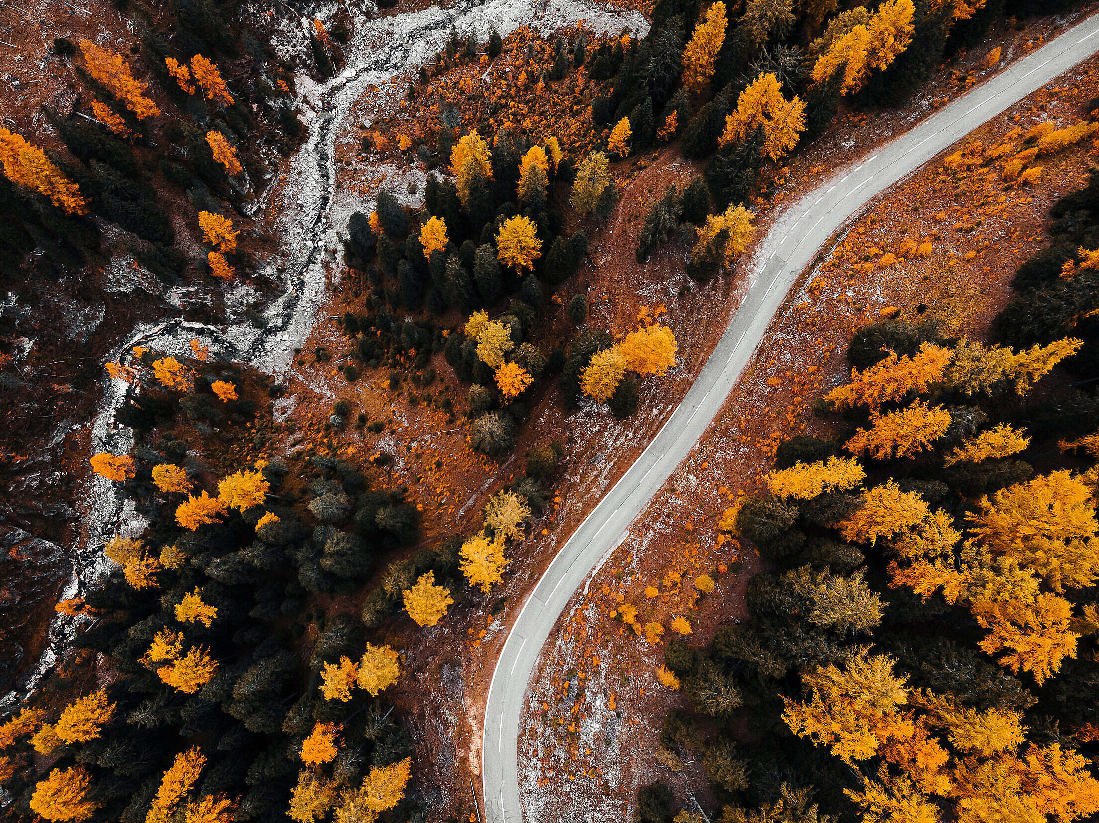 Autumn Forest Road from Above Free Stock Photo