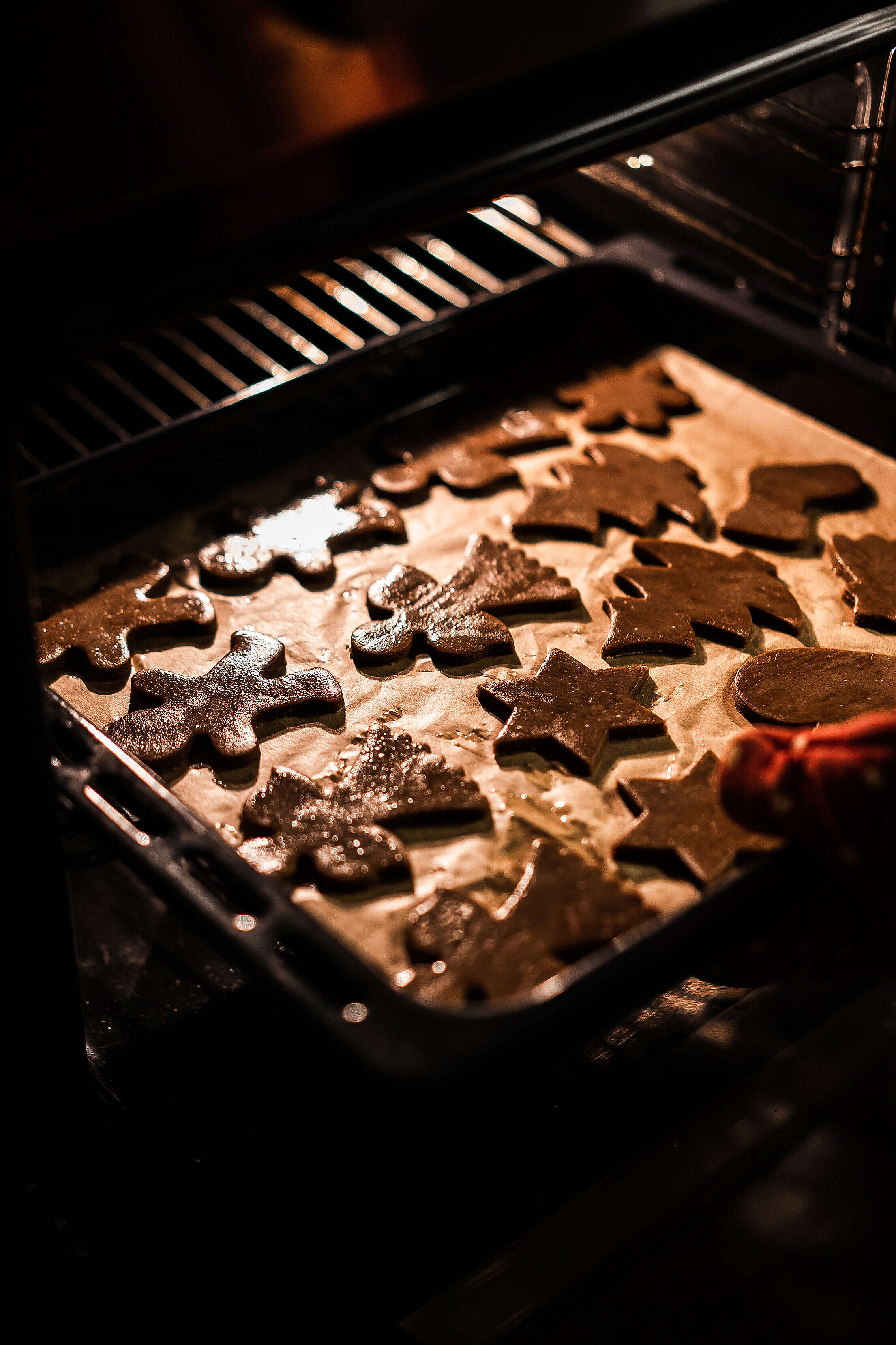 Baking Gingerbread Cookies Free Stock Photo