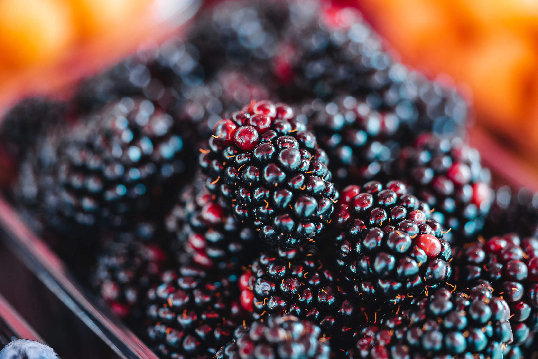 Basket of Blackberries at The Farmers Market Free Stock Photo