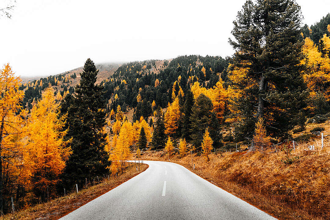 Download Beautiful Autumn Roads in The Mountains FREE Stock Photo