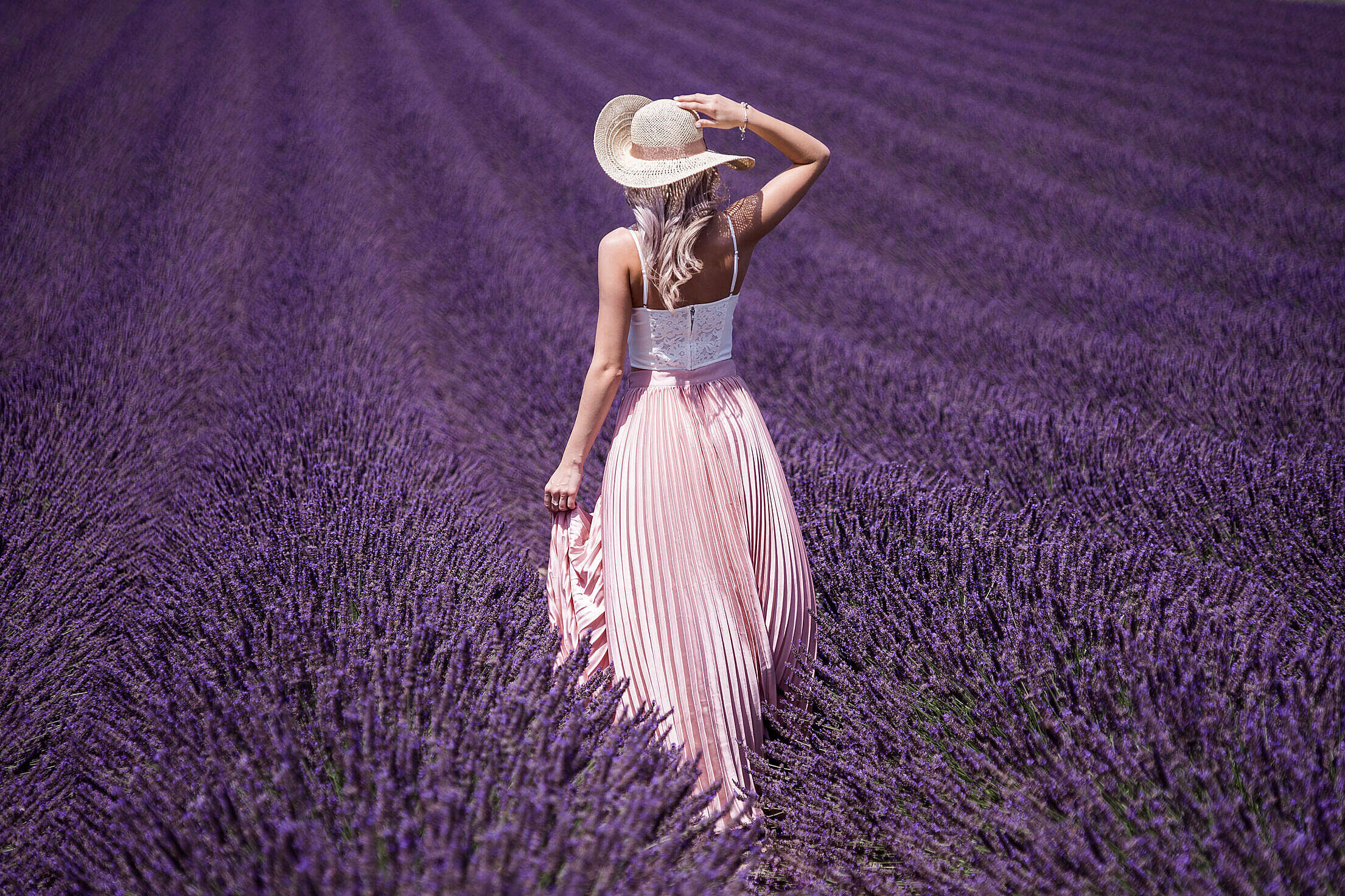 Beautiful Lady in Lavender Field Free Stock Photo