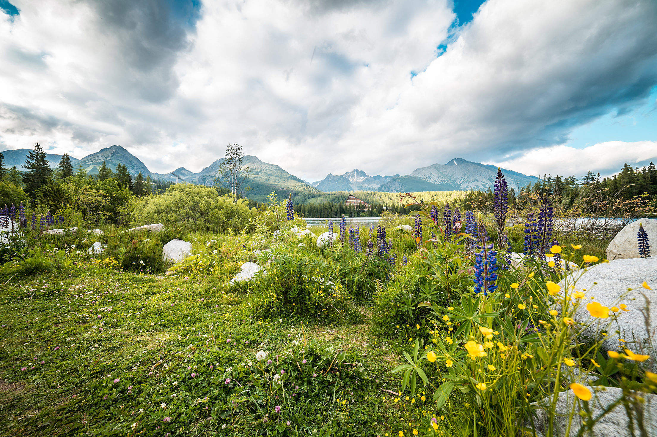 Beautiful Nature in High Tatras Mountains, Slovakia Free Stock Photo