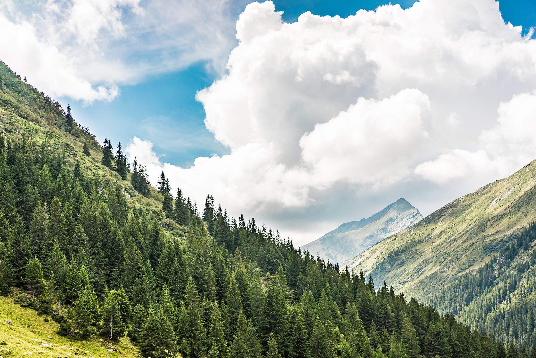 Beautiful Nature in Romanian Mountains Free Stock Photo