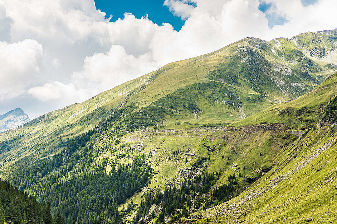 Download Beautiful Nature in Romanian Mountains FREE Stock Photo