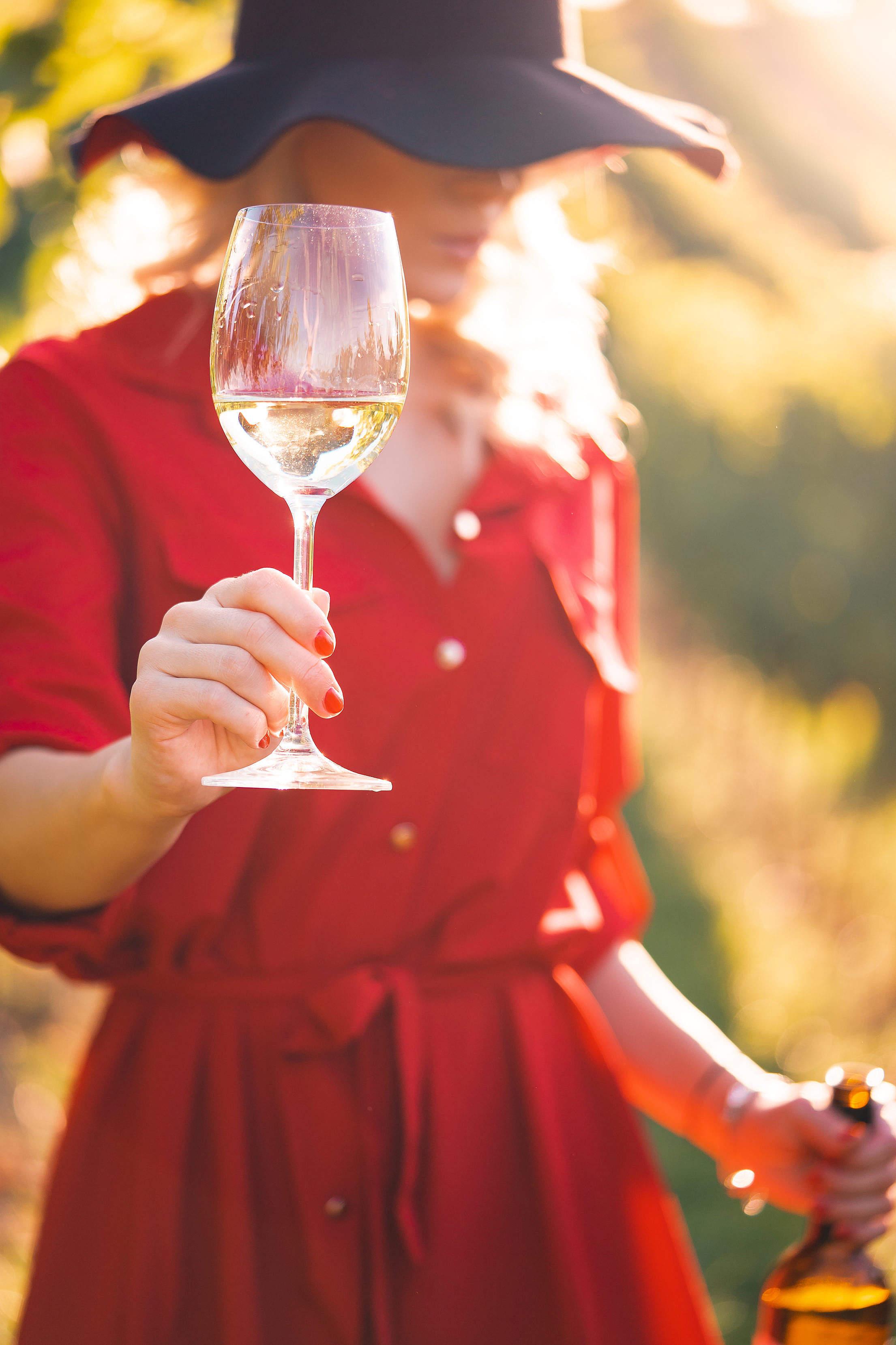 Beautiful Woman Holding a Glass of Wine Free Stock Photo