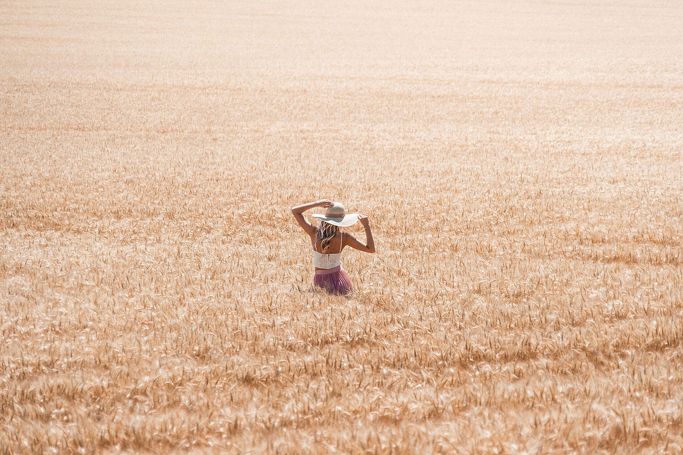 Beautiful Woman in Wheat Field Free Stock Photo