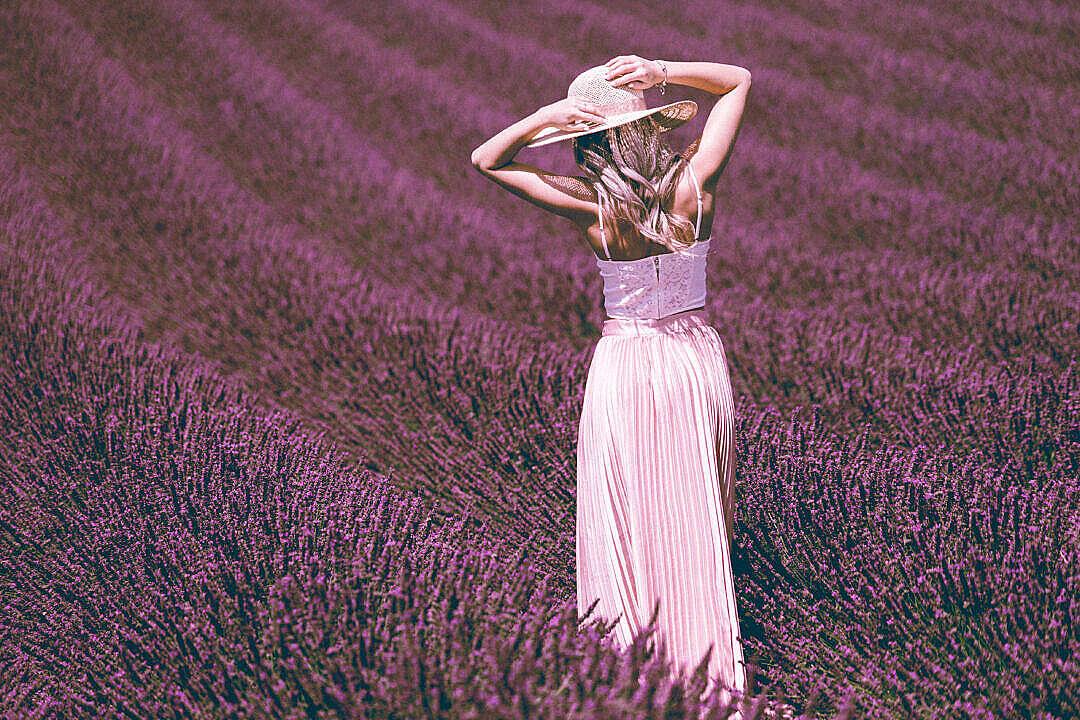 Download Beautiful Woman Posing in Lavender Field FREE Stock Photo