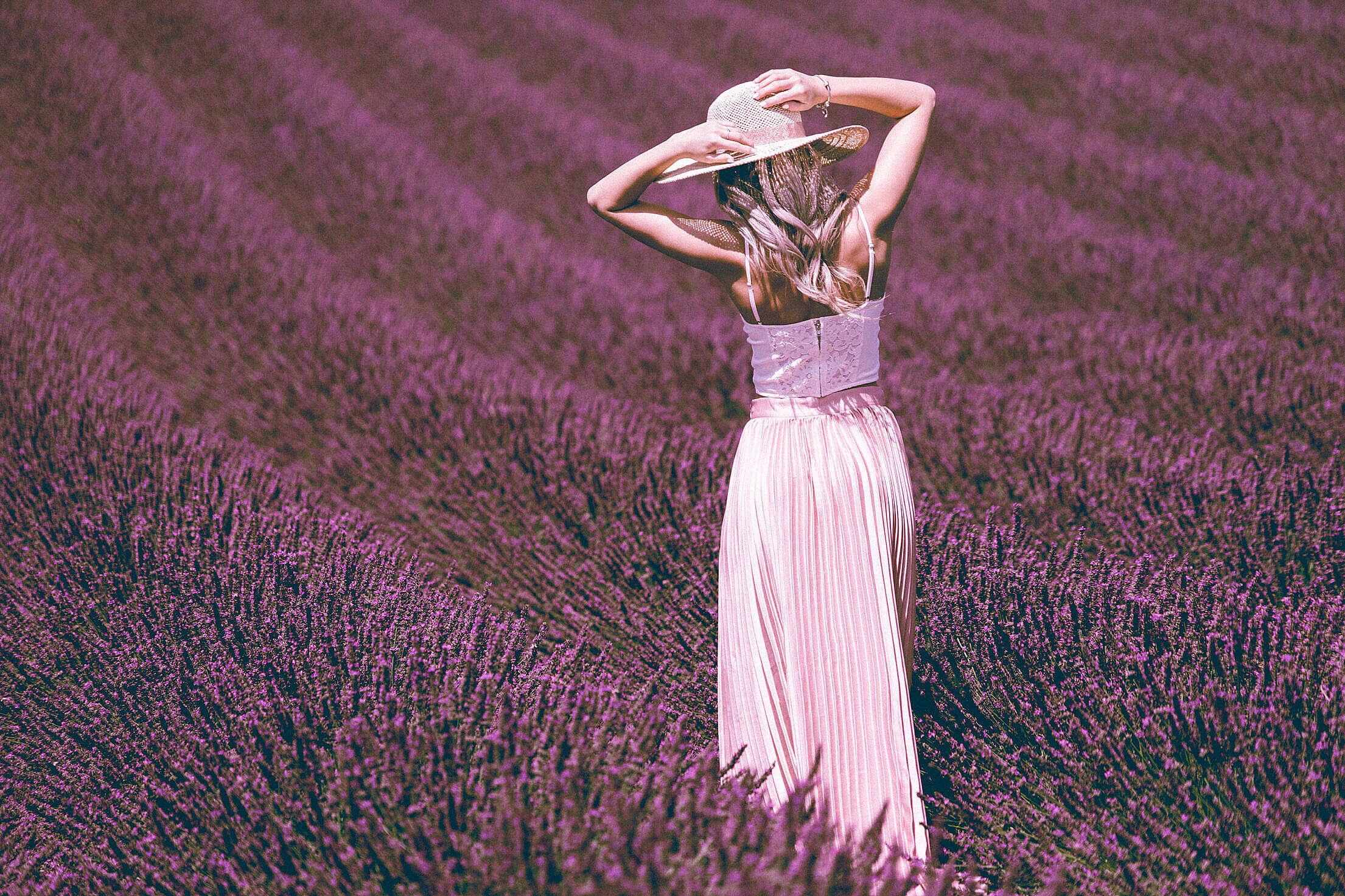Beautiful Woman Posing in Lavender Field Free Stock Photo