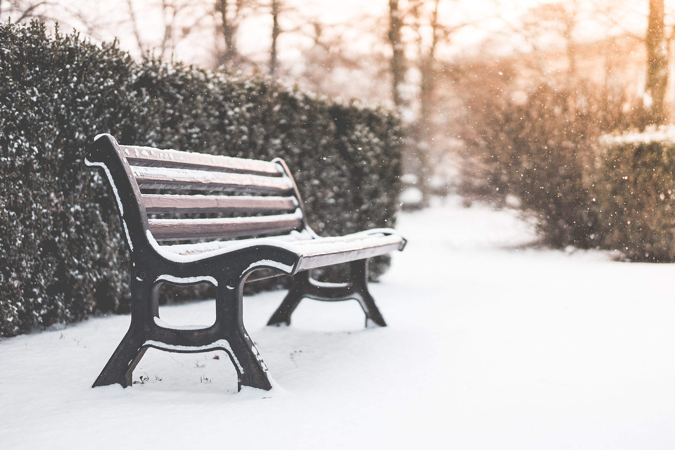 Bench in a Park and Snowy Weather Free Stock Photo