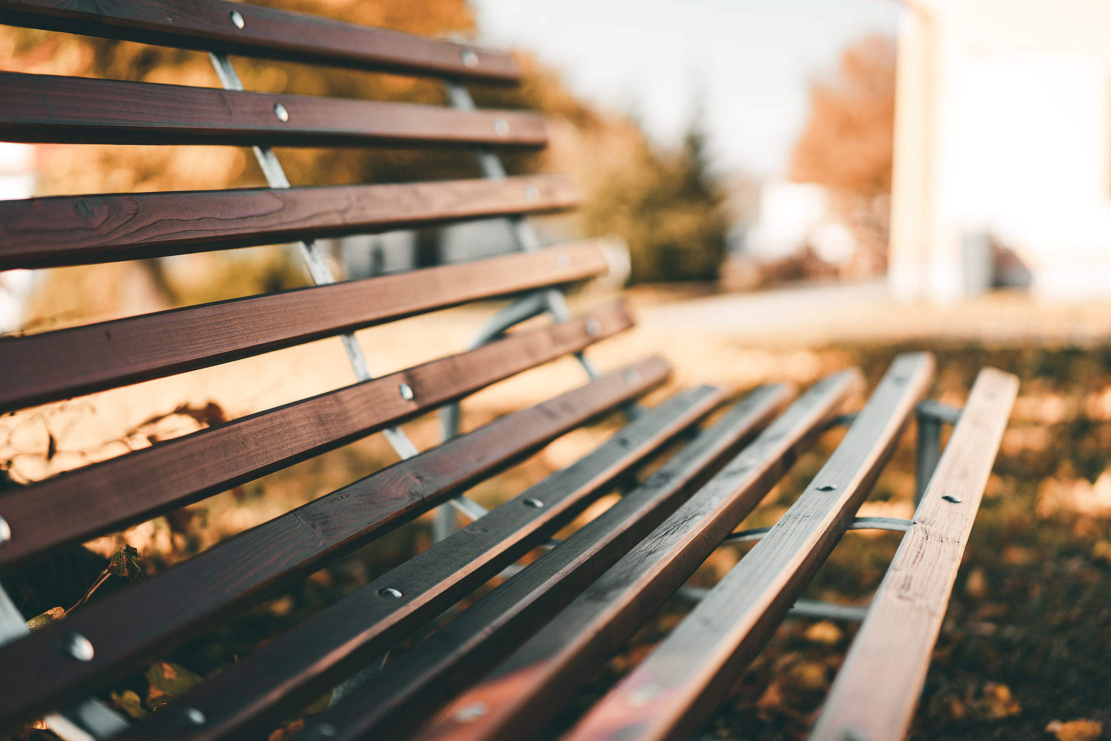 Bench in The Park Close Up Free Stock Photo