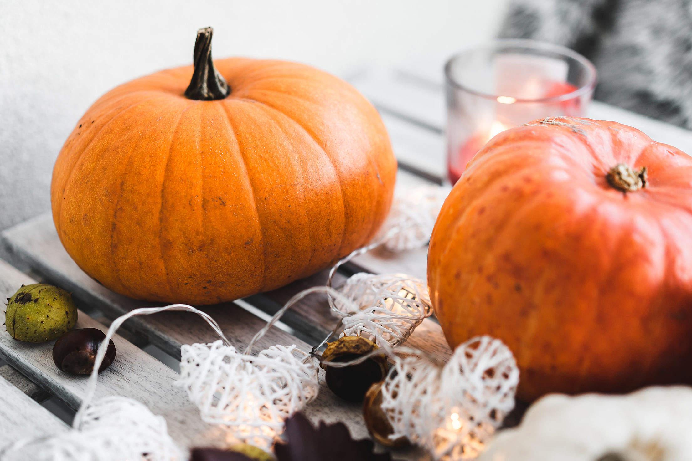 Big Decorative Pumpkins Free Stock Photo