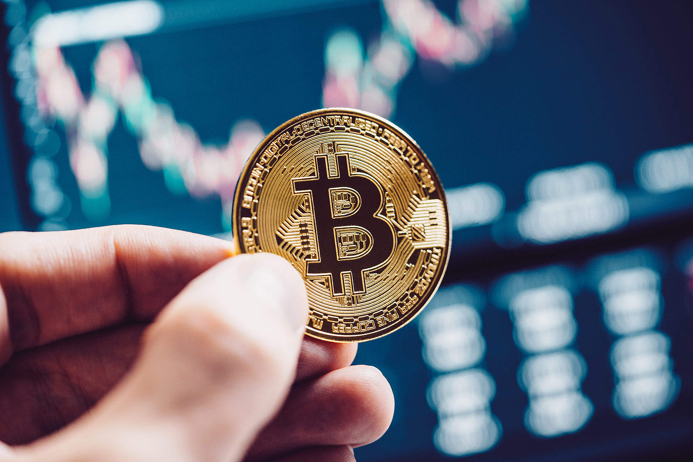 Bitcoin and Currency Stock Market Charts Free Stock Photo
