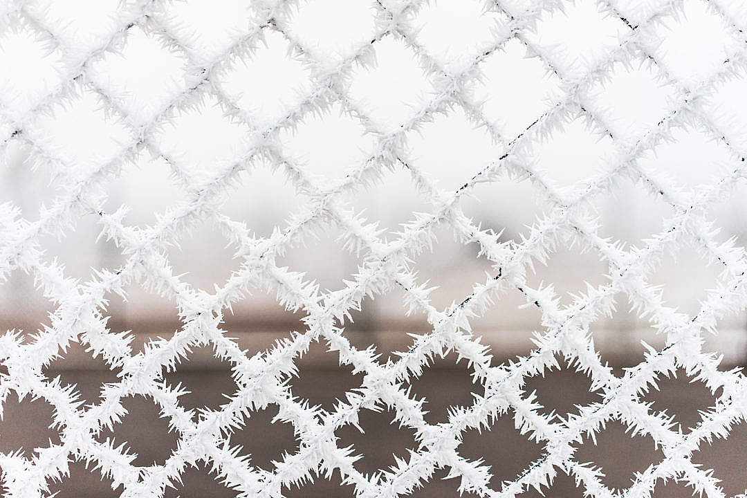 Download Bitter Cold Hoarfrost vs. Steel Fence FREE Stock Photo