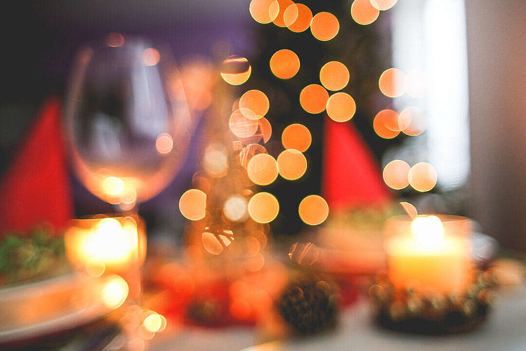 Download Blurred Christmas Tree Background FREE Stock Photo