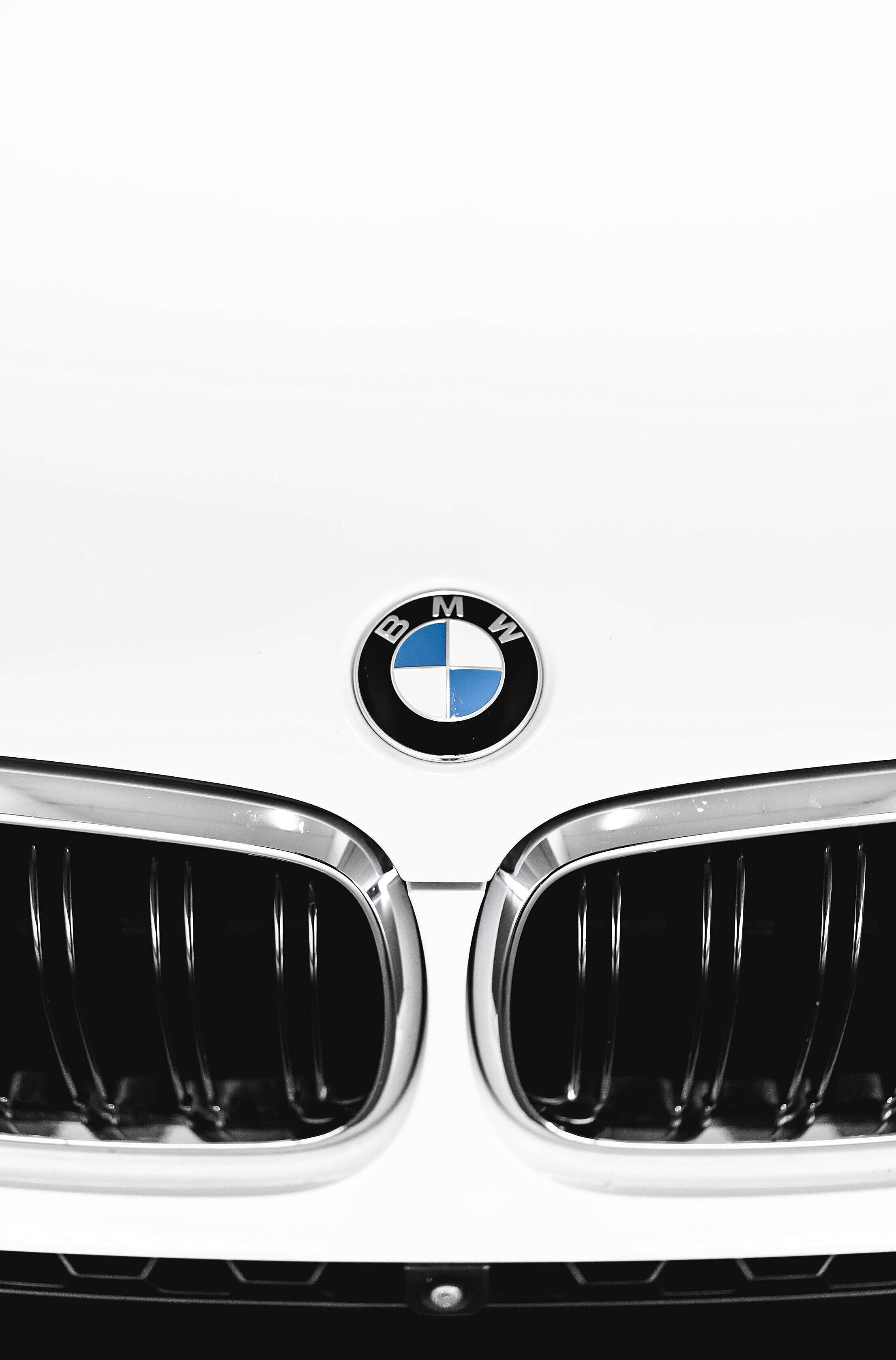 BMW Car Bonnet Badge Free Stock Photo