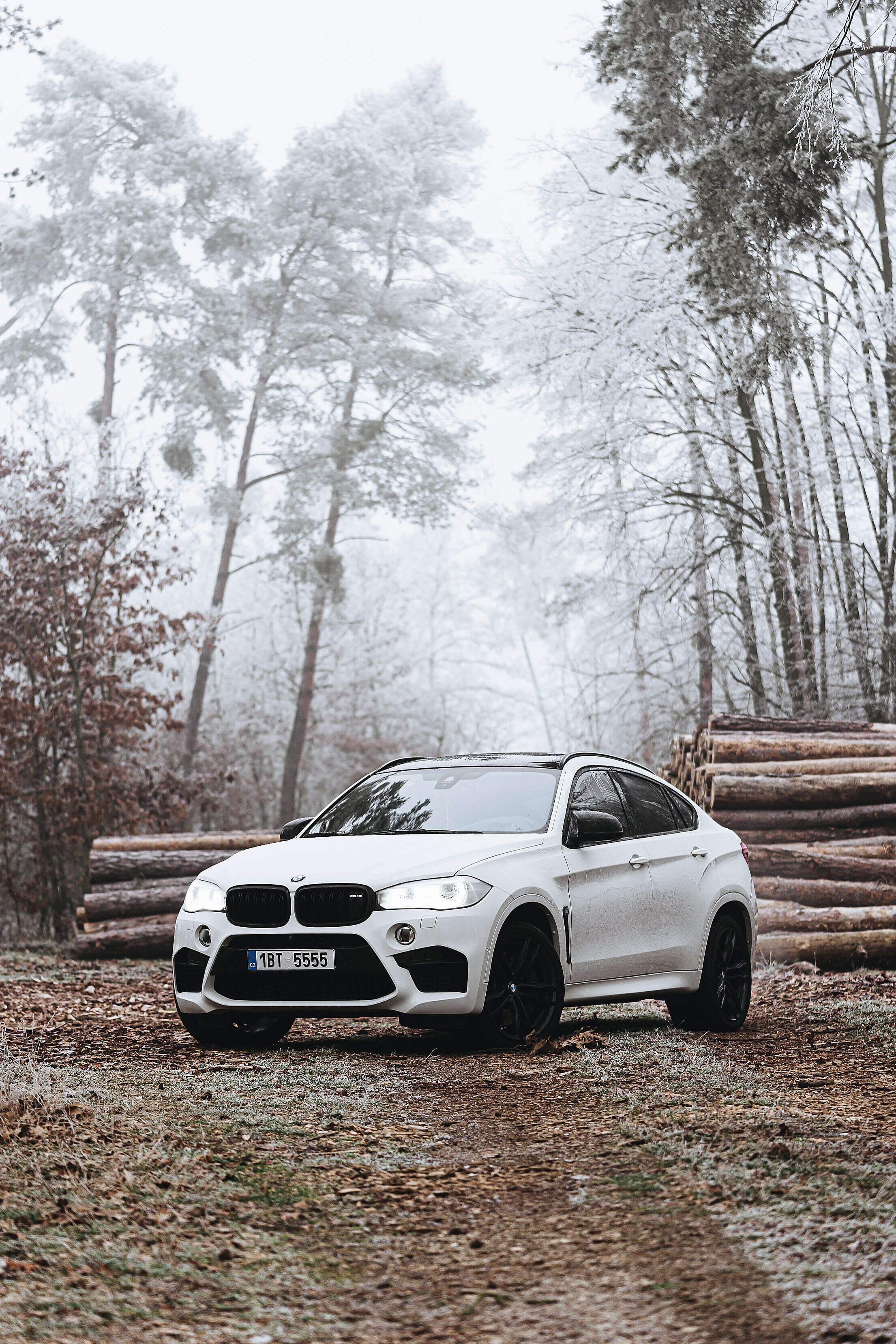 BMW X6M in Frozen Forest Free Stock Photo