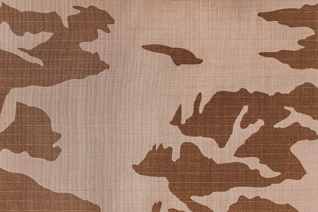 Download Brown Camouflage Pattern FREE Stock Photo