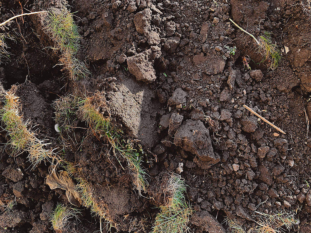 Download Brown Soil Plowed Field Close Up FREE Stock Photo