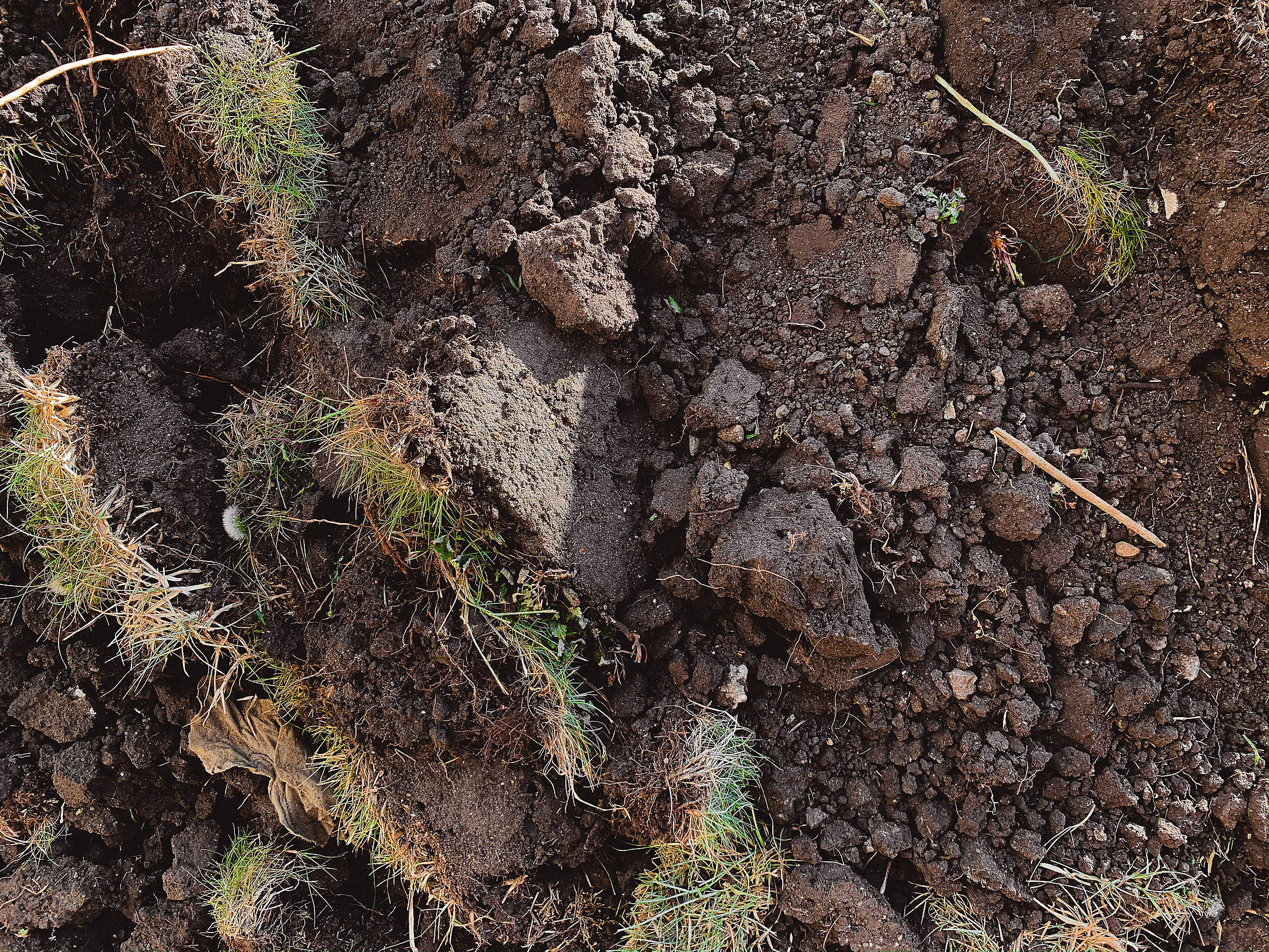 Brown Soil Plowed Field Close Up Free Stock Photo