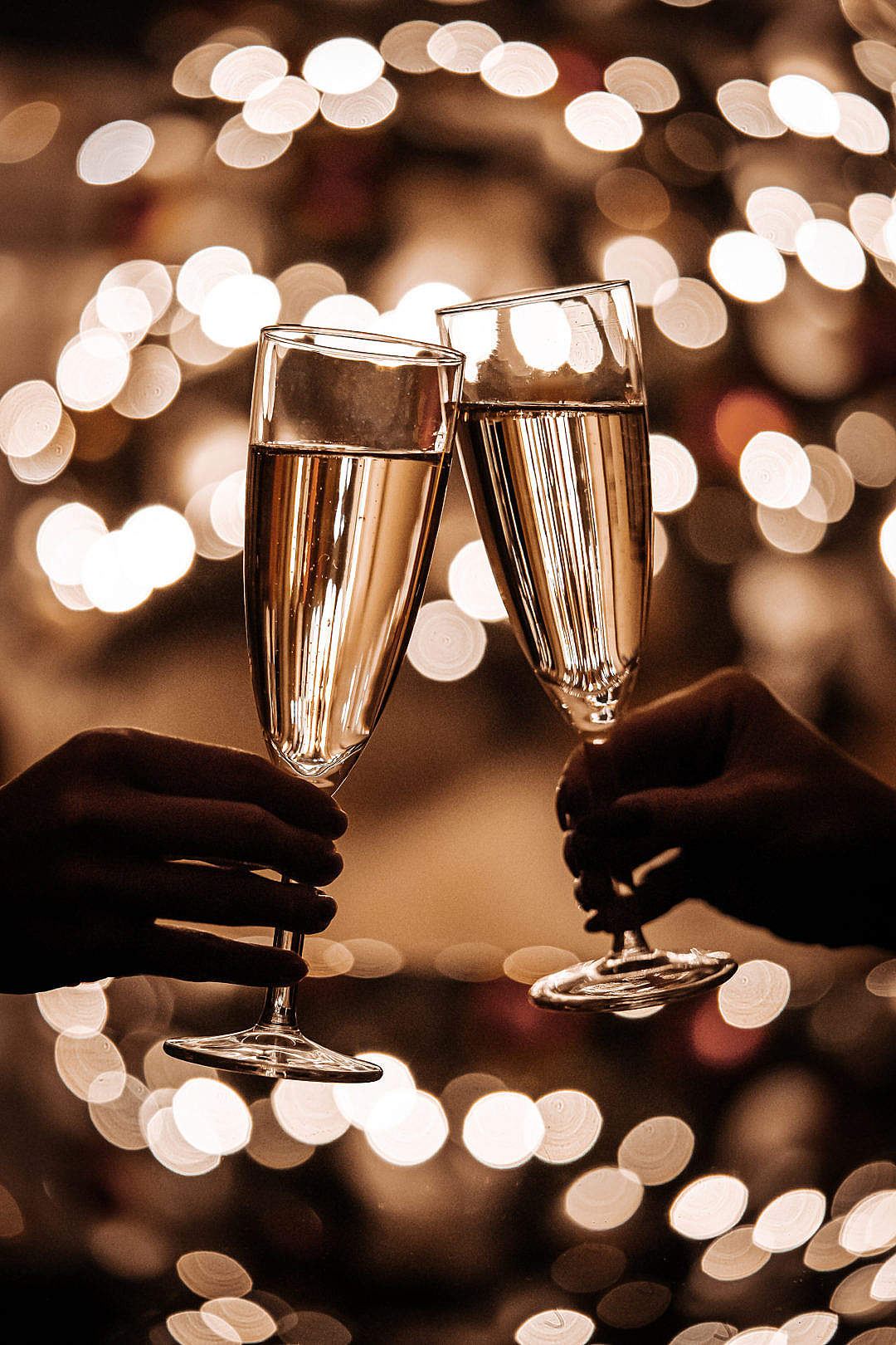 Download Cheers FREE Stock Photo