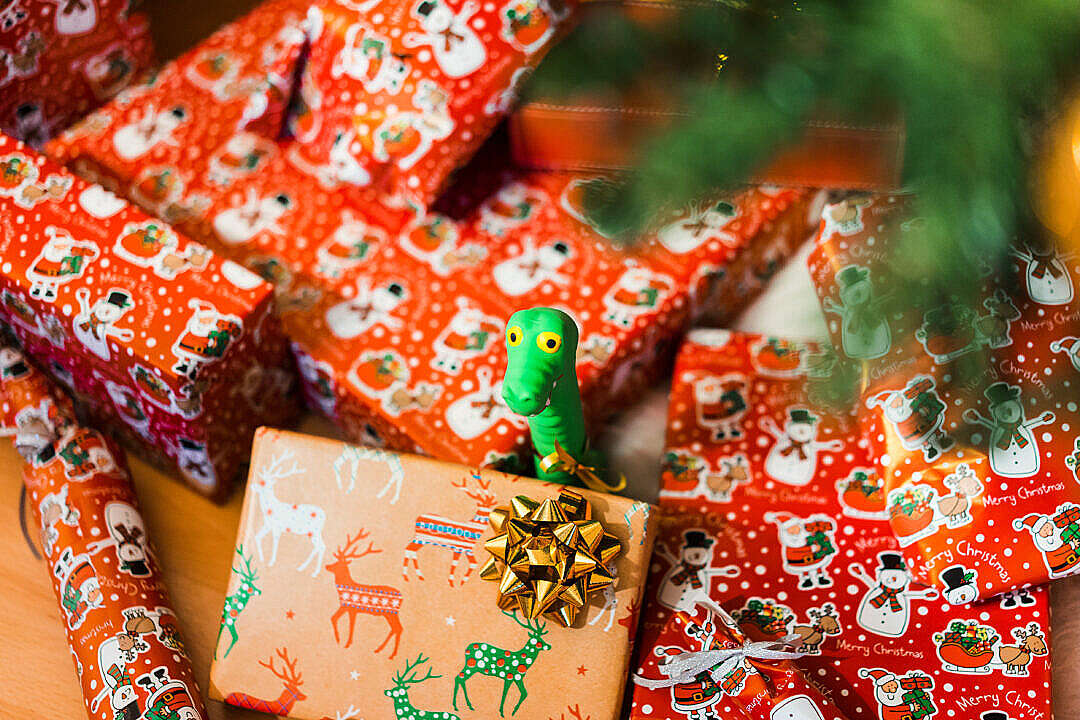 Download Christmas Gifts and Toy for Dogs FREE Stock Photo