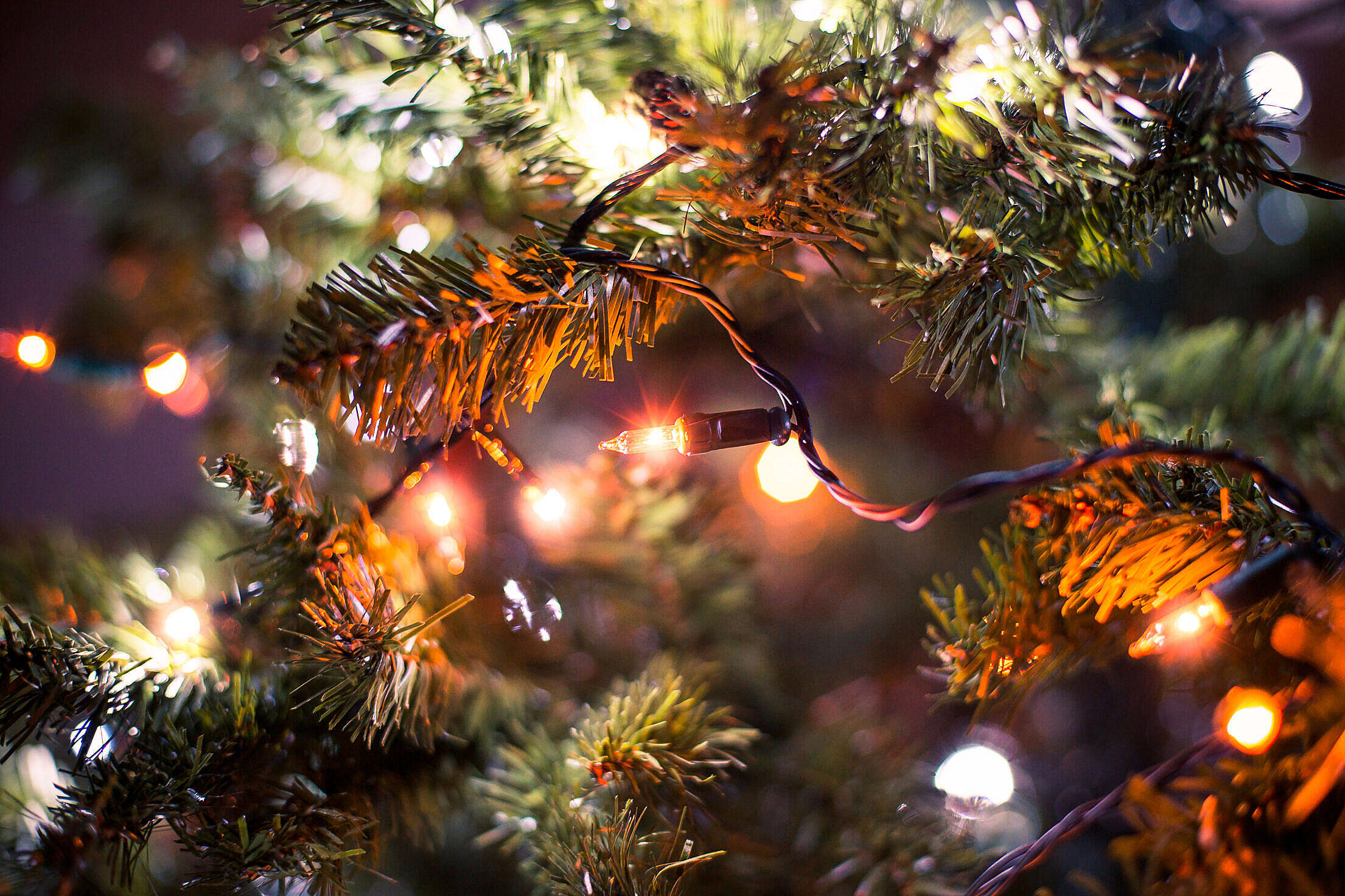 Christmas Lights Close Up Free Stock Photo
