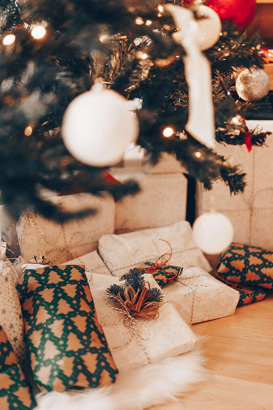 Download Christmas Presents under Christmas Tree FREE Stock Photo