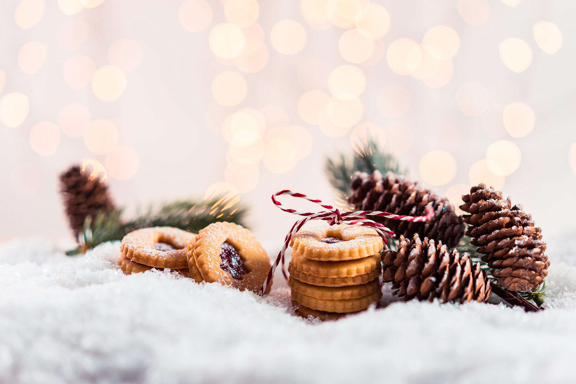 Christmas Still Life with Space for Text Free Stock Photo