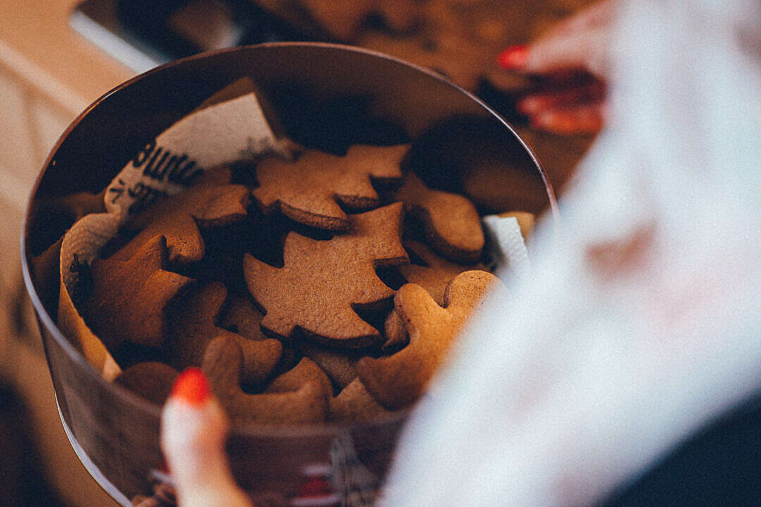 Download Christmas Sweets in a Box FREE Stock Photo