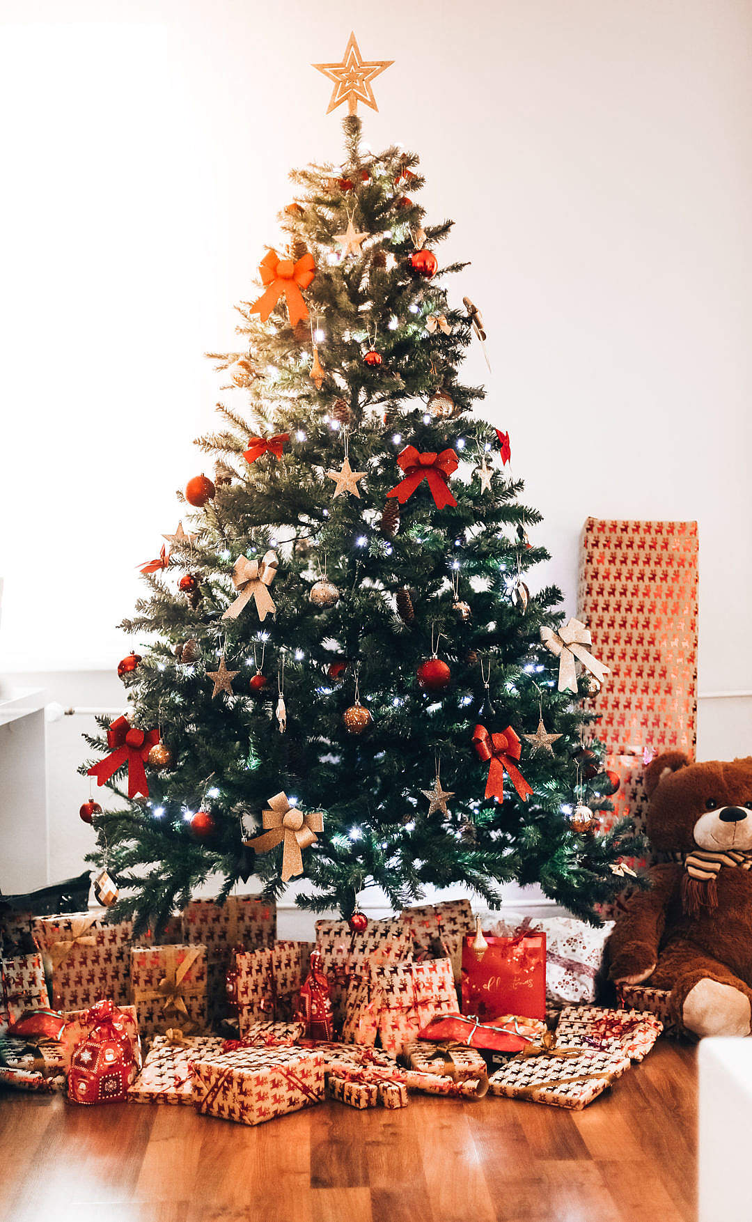Download Christmas Tree FREE Stock Photo