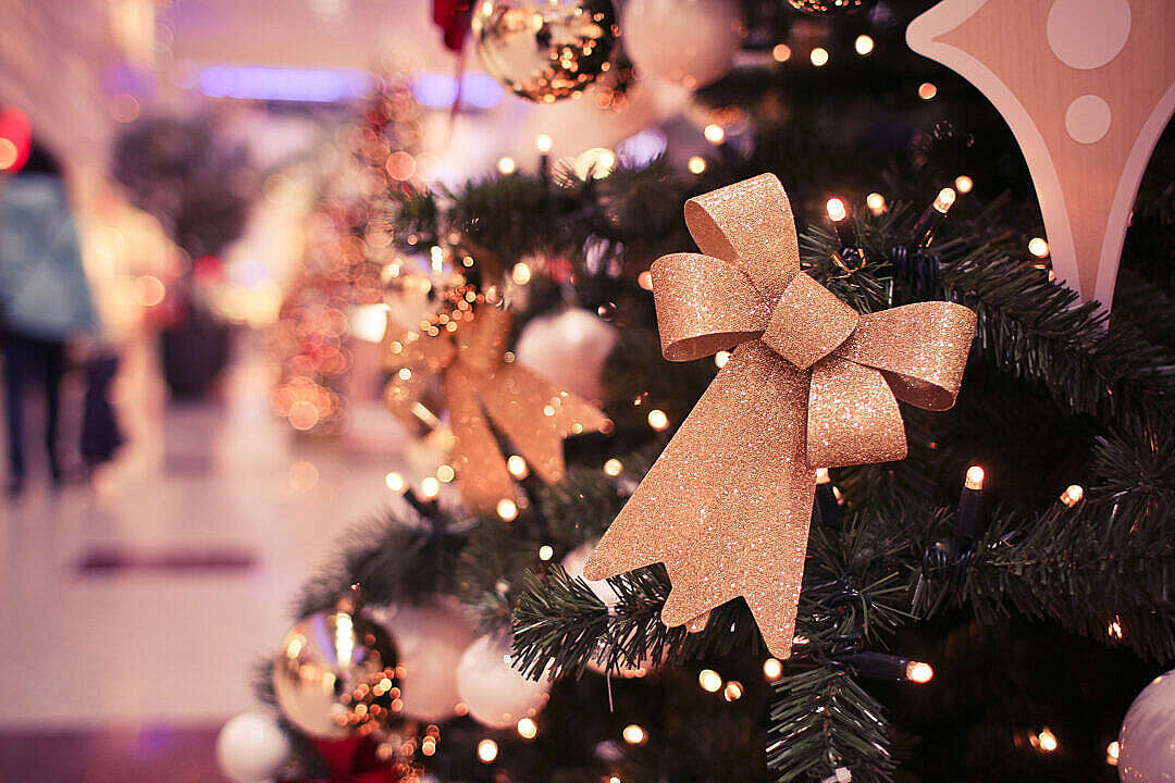 Download Christmas Tree in Shopping Centre FREE Stock Photo