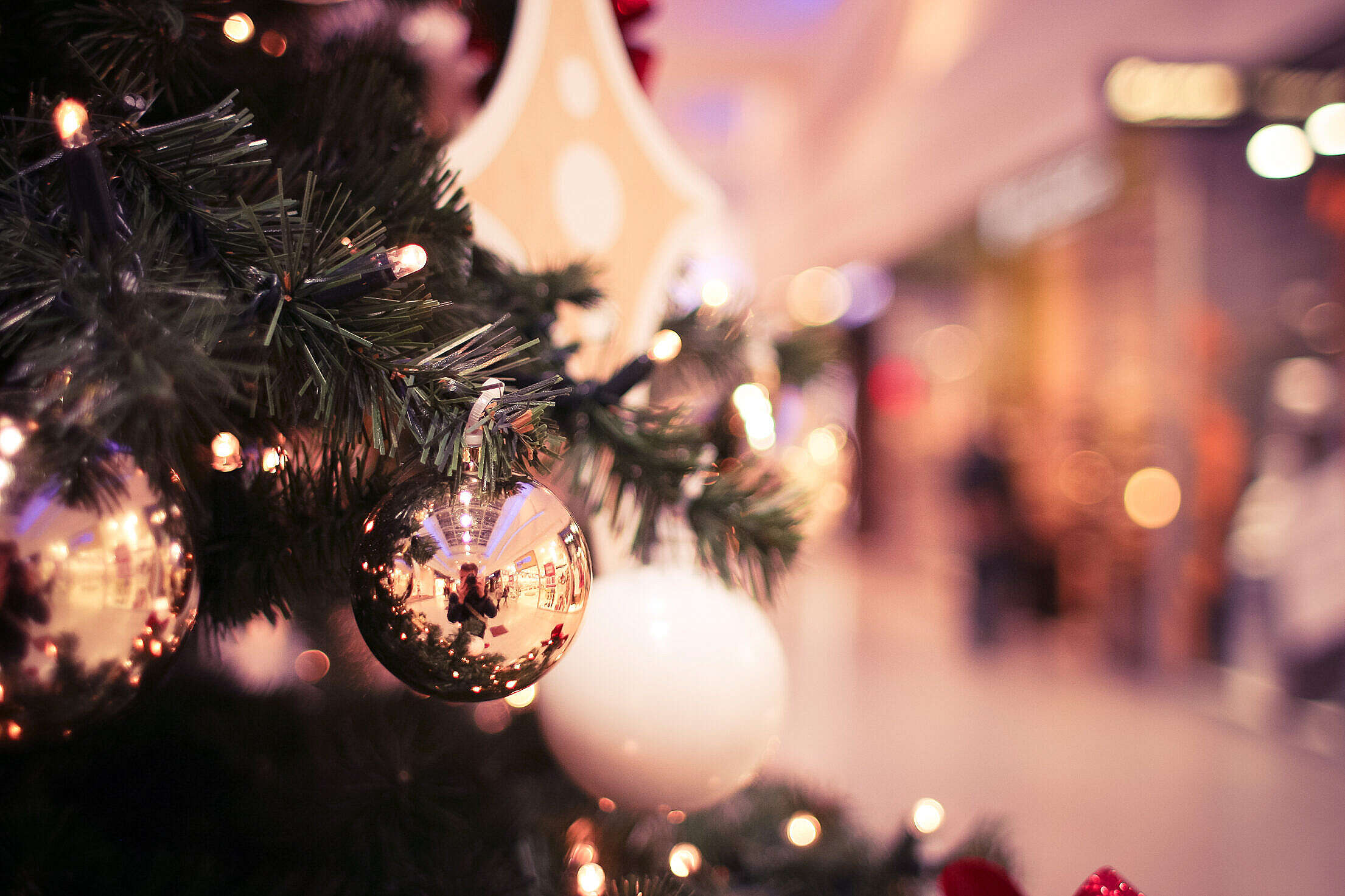 Christmas Tree in Shopping Mall Free Stock Photo