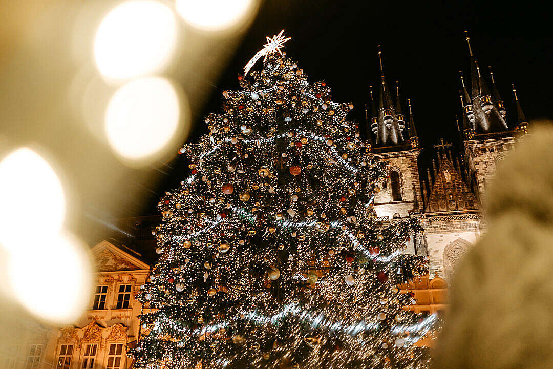 Download Christmas Tree on Prague Old Town Square FREE Stock Photo