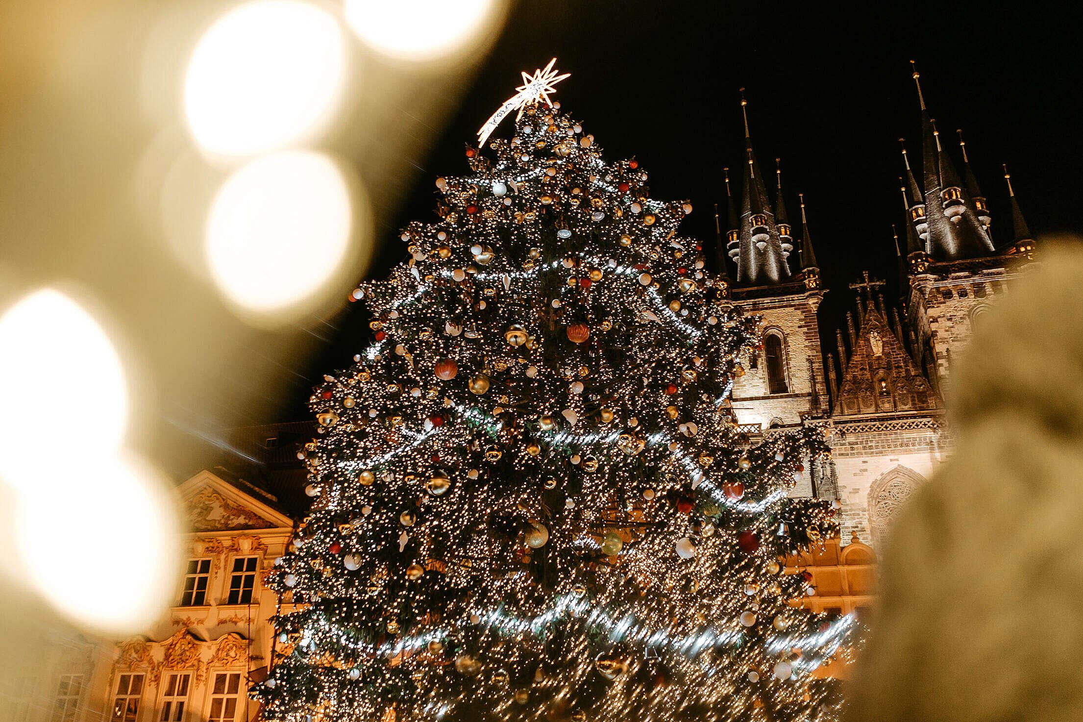 Christmas Tree on Prague Old Town Square Free Stock Photo