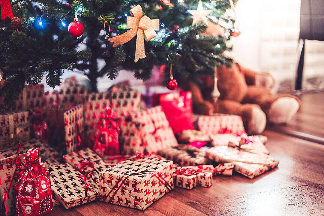 Download Christmas Tree with Presents on Christmas Eve FREE Stock Photo