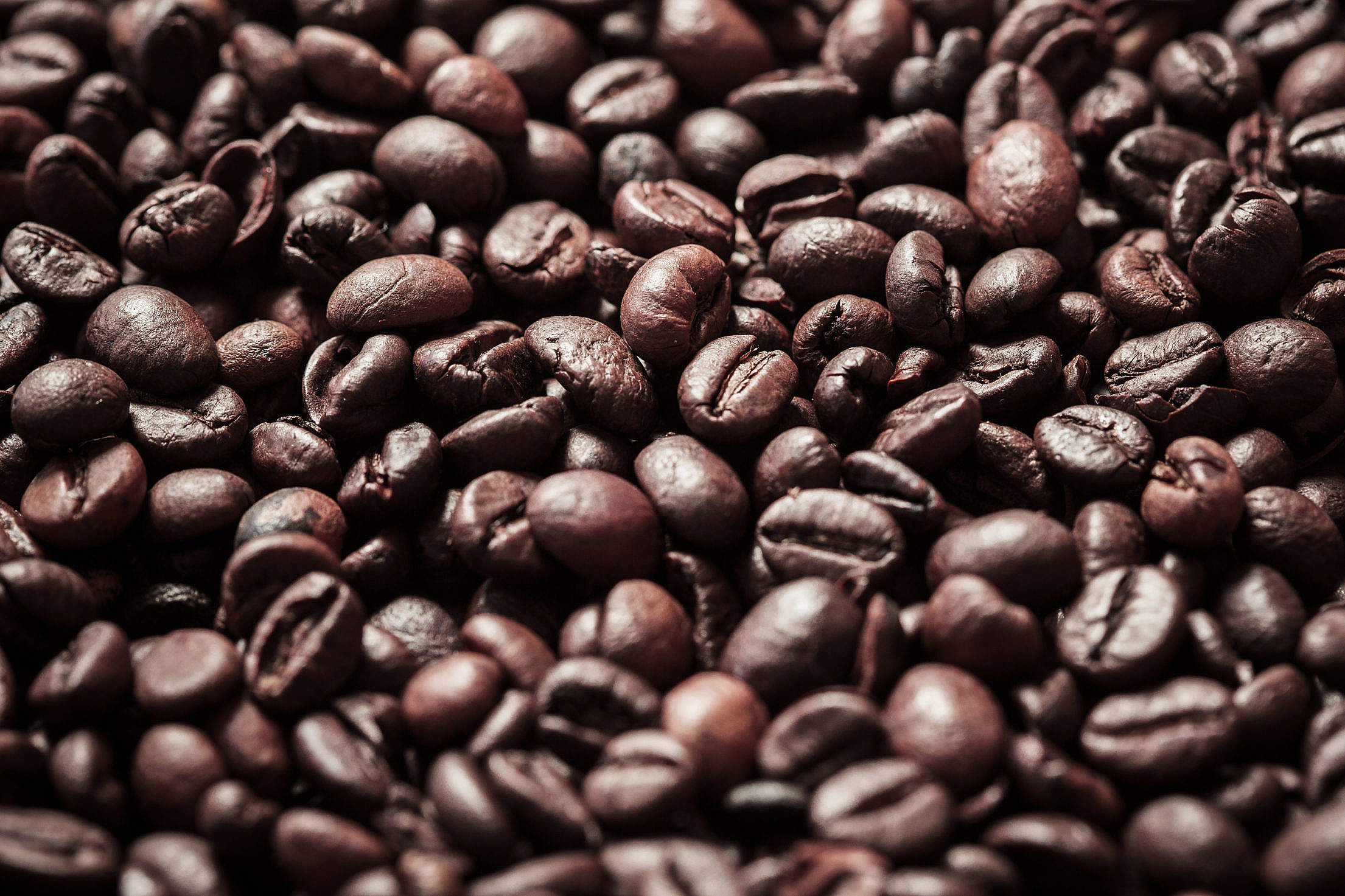 Download Coffee Beans Close Up Free Stock Photo