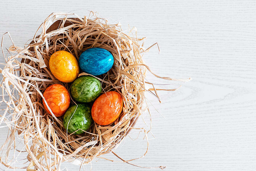 Download Colored Easter Eggs FREE Stock Photo