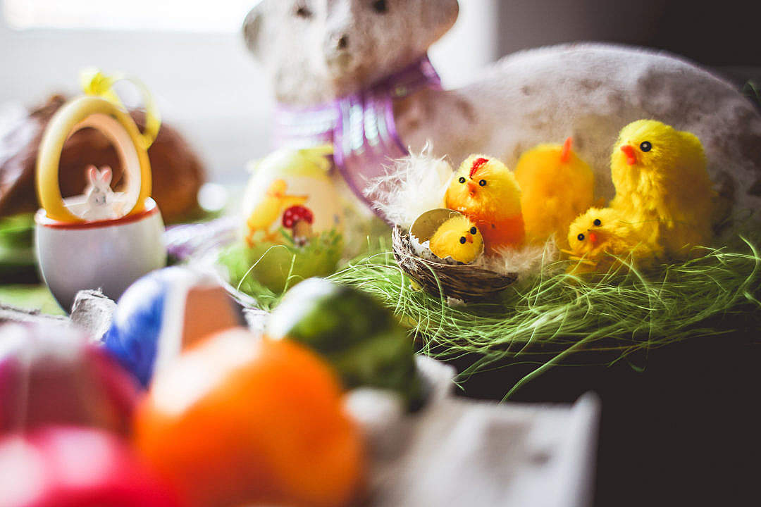 Download Colorful Easter Decorations FREE Stock Photo