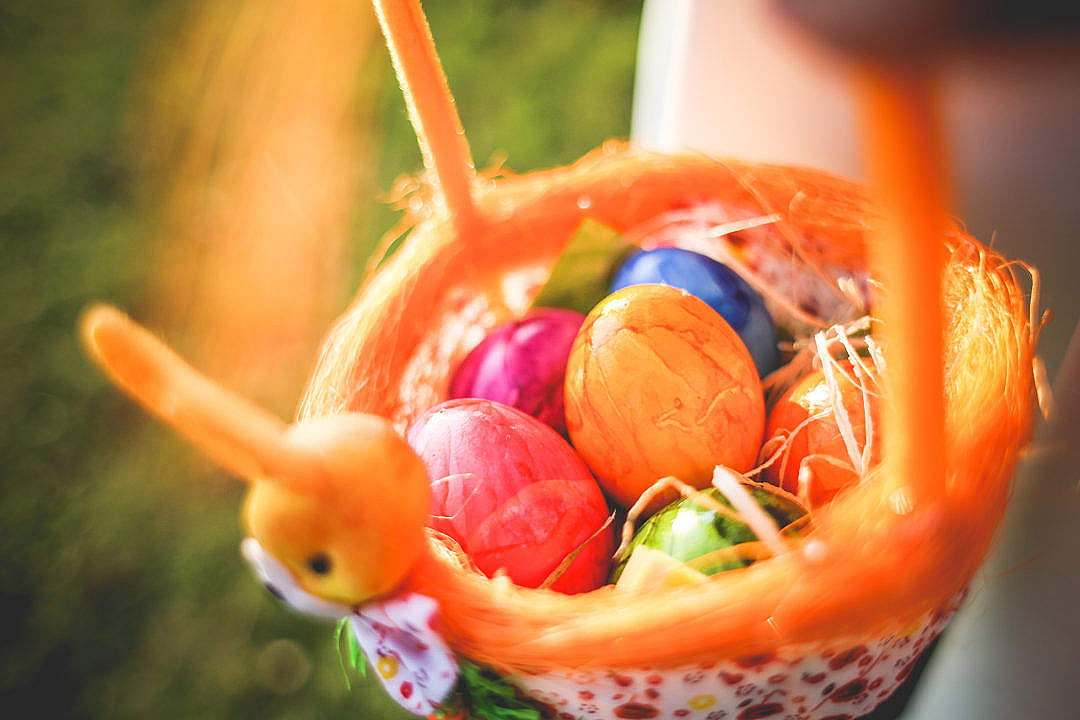 Download Colorful Easter Eggs FREE Stock Photo