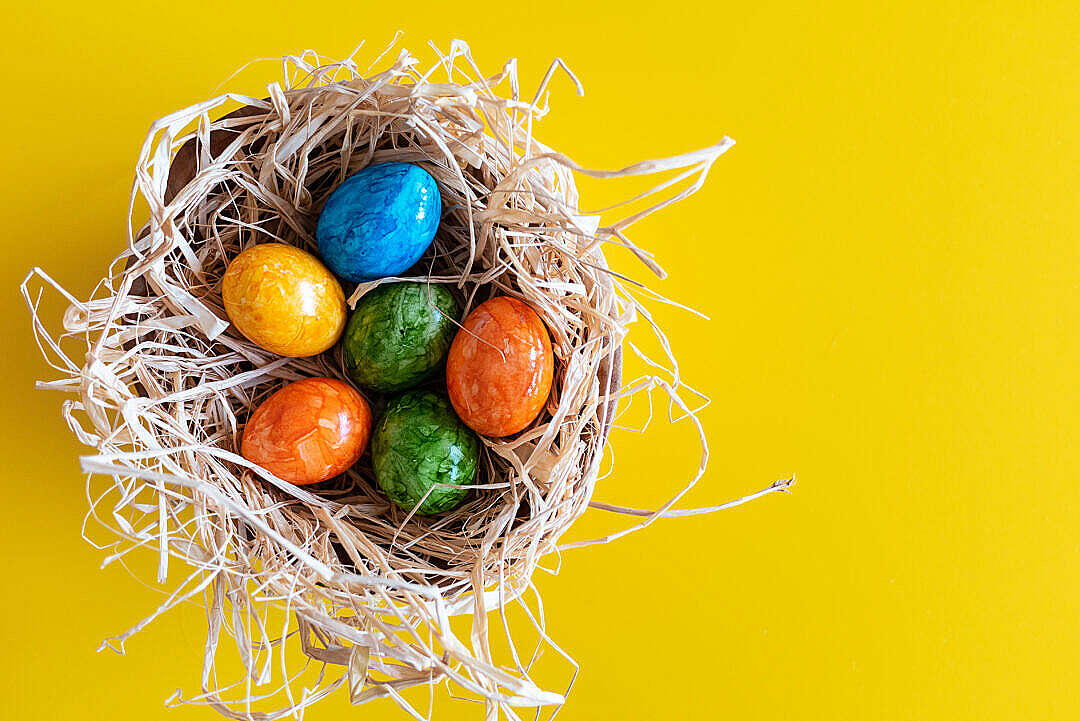 Download Colorful Easter Eggs on Yellow Background FREE Stock Photo