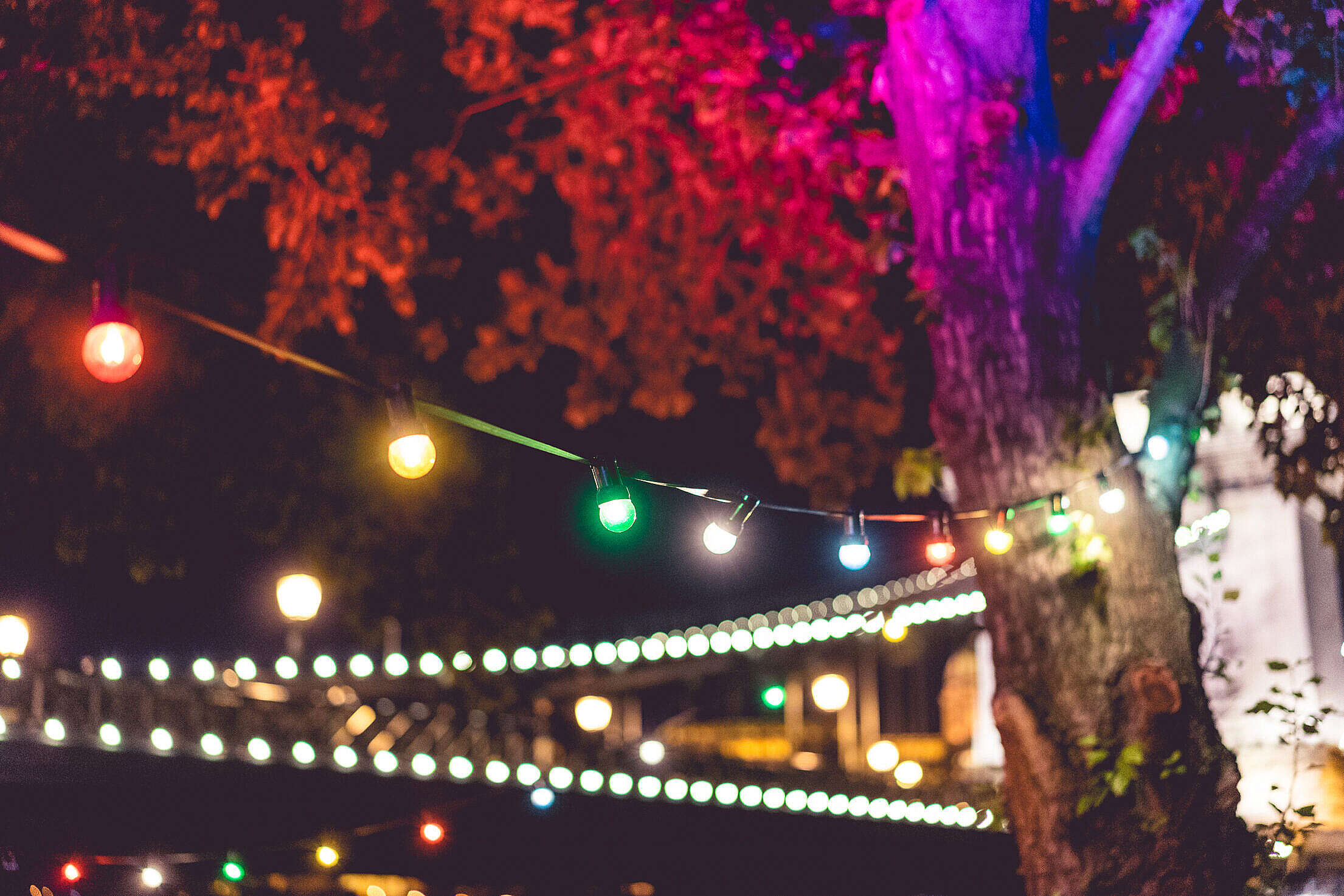 Colorful Lights on Night Garden Party Free Stock Photo